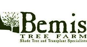 Bemis Tree Farm Logo